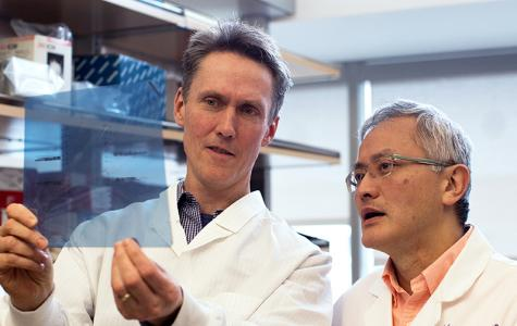 Hideho Okada and Joseph Costello discuss results at the lab bench